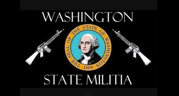 Washington State Militia logo