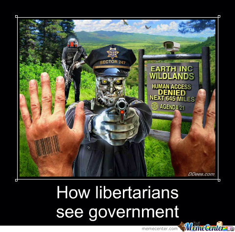 How libertarians see government